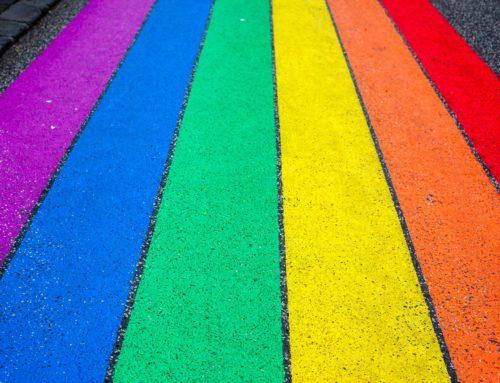 Referents LGTBI a l'escola